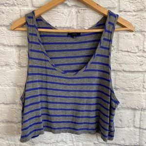 ARITZIA TALULA Gray Blue Stripe Crop Tank Top